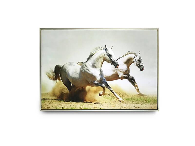 Maxim Wall Art Array image30