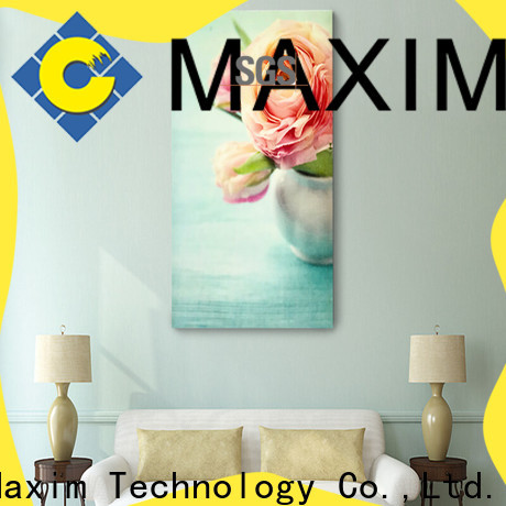 Maxim Wall Art hotel room decoration factory price for living room