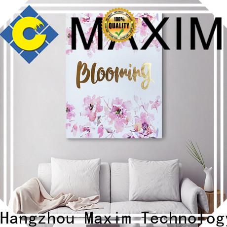 Maxim Wall Art creative big canvas prints wholesale for bathroom