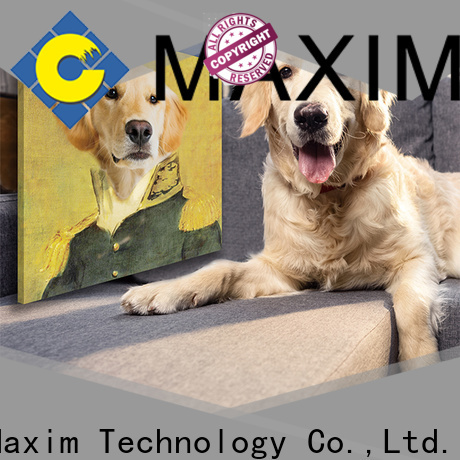 Maxim Wall Art creative panel wall art personalized for bedroom