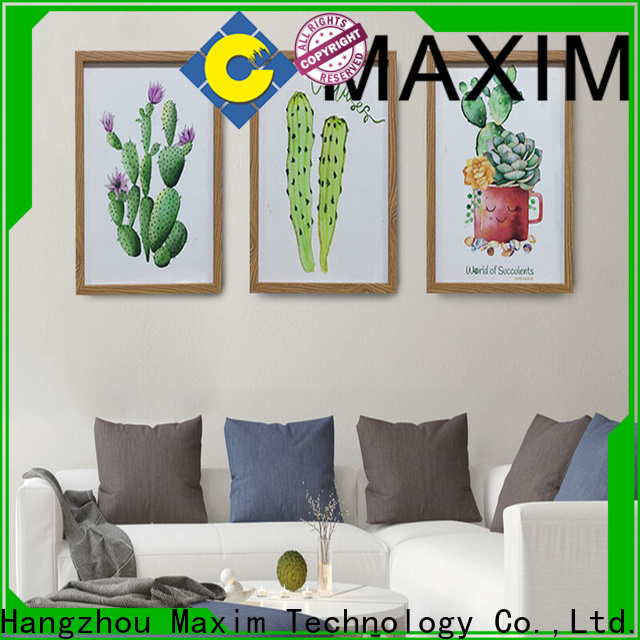 Maxim Wall Art professional black and white canvas art directly sale for studio