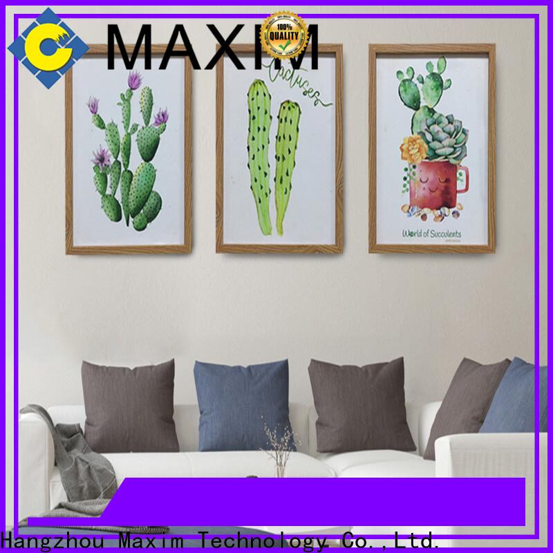Maxim Wall Art large framed art supply
